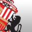 Martin de Roon snatches derby honours for Middlesbrough over Sunderland